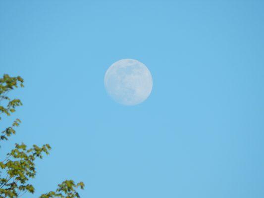 Ohio Moon may 2016